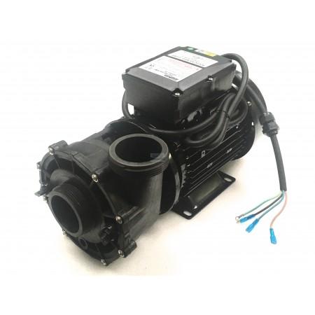 POMPE HOTSPRING - WATKINS 2 pouces 2.5 HP 2 vitesses