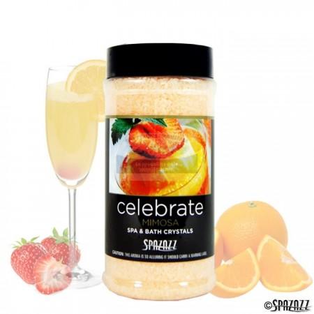 SPAZAZZ Celebrate 482g