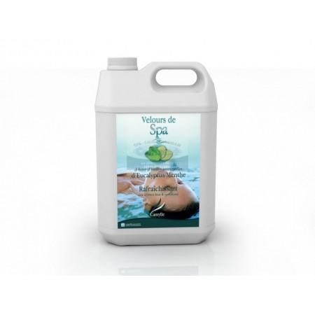 Velours de spa eucalyptus 5 litres